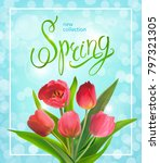 beautiful spring background on... | Shutterstock . vector #797321305