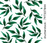 hand painted green leaves.... | Shutterstock . vector #797337844