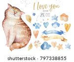 watercolor cute isolated cat... | Shutterstock . vector #797338855