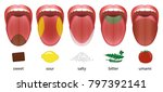 tongue with five taste areas... | Shutterstock .eps vector #797392141