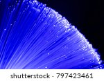 detail of blue growing bunch of ... | Shutterstock . vector #797423461