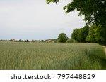 cornfield in bardowick ... | Shutterstock . vector #797448829