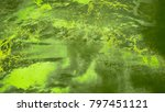 oil painting on wall canvas... | Shutterstock . vector #797451121
