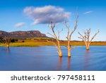 flinders ranges  south australia | Shutterstock . vector #797458111