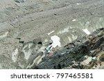 spectacular panorama of mer de... | Shutterstock . vector #797465581