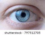 Macro Image Of Blue Human Eye