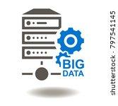 big data server icon vector.... | Shutterstock .eps vector #797541145