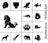 wildlife icons. set of 13... | Shutterstock .eps vector #797601325