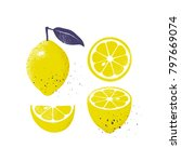 collection of lemon fruits... | Shutterstock .eps vector #797669074