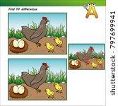 quiz find 10 differences hen... | Shutterstock .eps vector #797699941