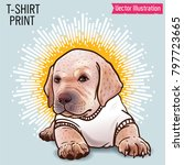 little cute labrador puppy in a ... | Shutterstock .eps vector #797723665