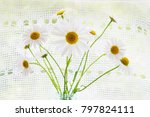 a simple bouquet of the...   Shutterstock . vector #797824111