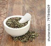 wood betony herb used in... | Shutterstock . vector #797848609