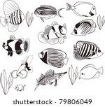 fish set | Shutterstock .eps vector #79806049