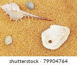 marine cockleshells and stones on by gold the beads - stock photo