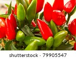 bush of red chili peppers closeup - stock photo