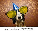 Stock photo cute dog ready for a funky party 79937899
