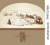 wine label   hand drawn vineyard | Shutterstock .eps vector #79971784