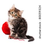 Stock photo cute little siberian kitten with red clew isolated on white background 80059324
