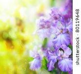 Abstract Summer Flower...