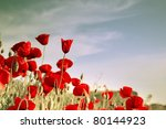 Red Poppies On A Background Of...