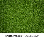 Grass Background  Fresh Green...