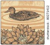 wild duck  flower and design... | Shutterstock .eps vector #80271412