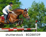 equestrian sport   young woman... | Shutterstock . vector #80288539