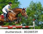 equestrian sport   young woman... | Shutterstock . vector #80288539