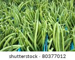 Just Harvested Green Beans At...