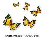 butterfly   Shutterstock . vector #80400148