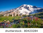 Mt Rainier National Park...