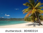 exotic palm beach of paradis... | Shutterstock . vector #80480314