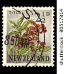 Small photo of NEW ZEALAND - CIRCA 1923: A stamp printed in New Zealand shows image of Alectryon excelsus (Titoki in Mauri), series, circa 1923