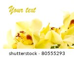 large yellow orchid isolated on a white background - stock photo
