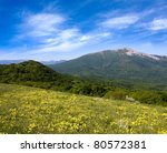 Yellow meadow in mountains - stock photo