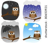 cute owl in different... | Shutterstock .eps vector #80653921