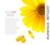 yellow daisy flower isolated on ... | Shutterstock . vector #80712247