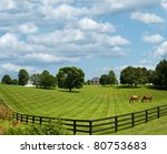 Sprawling Acres Of Fenced In...