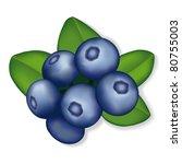 blueberries  juicy  garden...   Shutterstock .eps vector #80755003