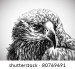 eagle head line art | Shutterstock .eps vector #80769691