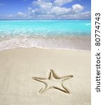 caribbean beach with starfish... | Shutterstock . vector #80774743