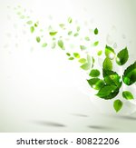 summer branch with fresh green... | Shutterstock .eps vector #80822206