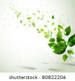 summer branch with fresh green... | Shutterstock .eps vector #80822206