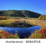 A Marshy Pond And Mountain...