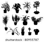 Silhouette Of Different Potted...