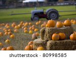 Pumpkin Patch On A Farm In...