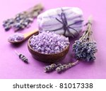 soap with sea salt and dried... | Shutterstock . vector #81017338