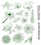 flower sketches collection | Shutterstock .eps vector #81027433