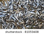 Small photo of Annual Lake Michigan Alewife die off